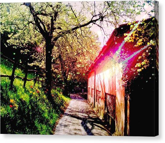 Fantasy Scenery Canvas Print by Darkus Photo