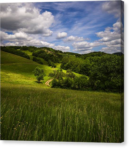 Far And Away Canvas Print