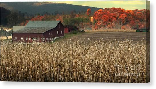 Farm Fall Colors Canvas Print