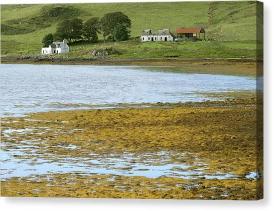 Farm In Isle Of Skye, Uk Canvas Print