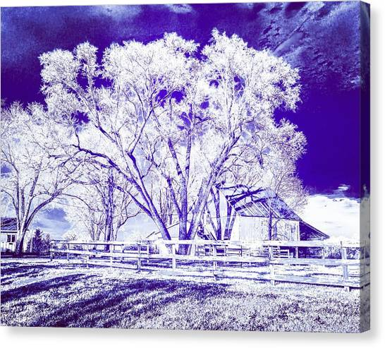 Farm In Suburbia With Wildcat Flare Canvas Print