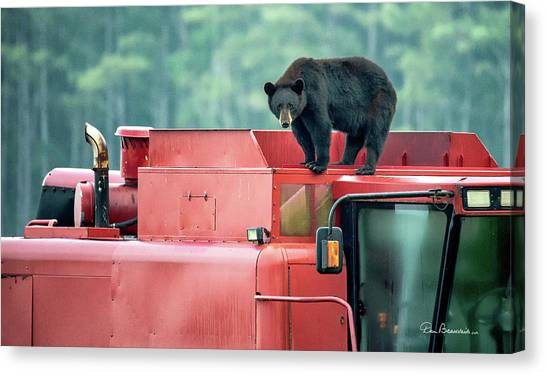 Farmer Bear 8819 Canvas Print