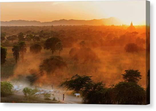 Canvas Print featuring the photograph Farmer Returning To Village In The Evening by Pradeep Raja Prints