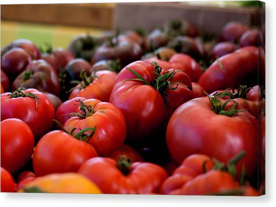 Farmer's Market Bounty Canvas Print