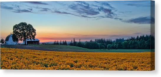 Farmhouse Among The Wallflowers Canvas Print