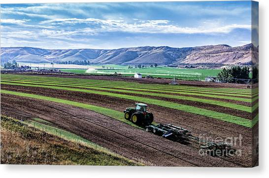Farming In Pardise Agriculture Art By Kaylyn Franks Canvas Print