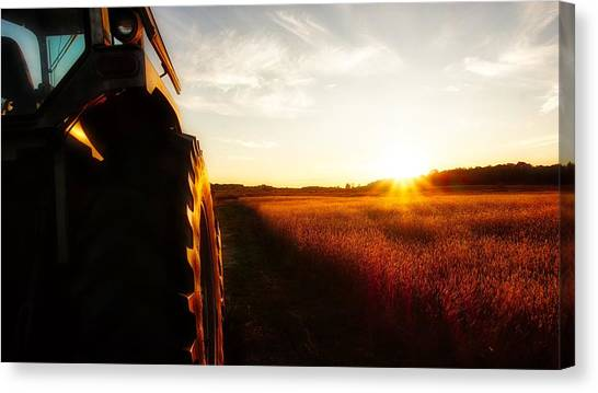 Farming Until Sunset Canvas Print