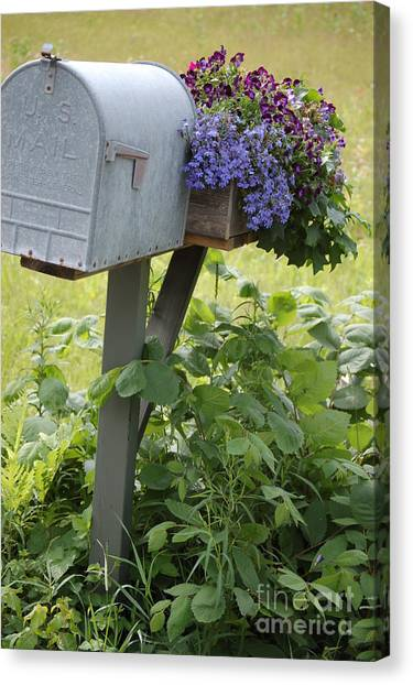 Farm's Mailbox Canvas Print