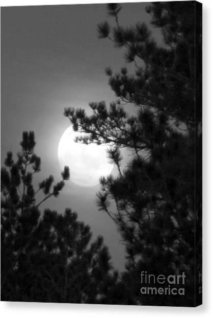 Favorite Full Moon Canvas Print