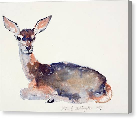 Deer Canvas Print - Fawn by Mark Adlington