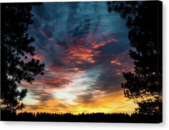 Canvas Print featuring the photograph Fearless Awakened by Jason Coward