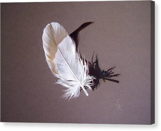Feather And Shadow 1 Canvas Print by Elena Kolotusha