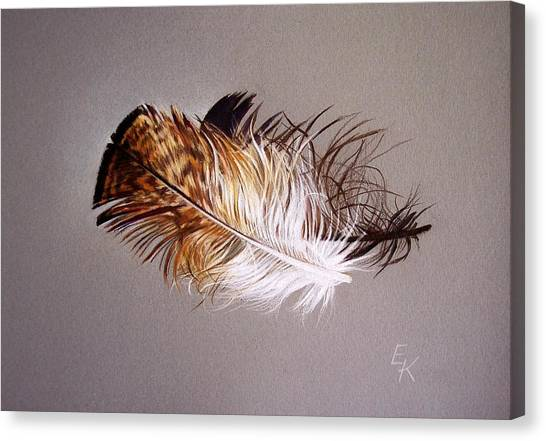 Feather And Shadow 2 Canvas Print
