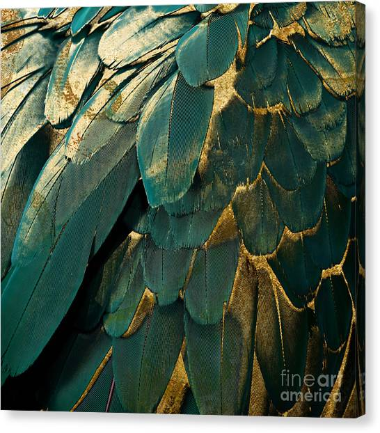 Gold Canvas Print - Feather Glitter Teal And Gold by Mindy Sommers