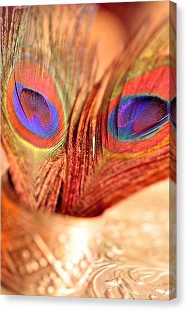 Feather Meets Sliver  Canvas Print