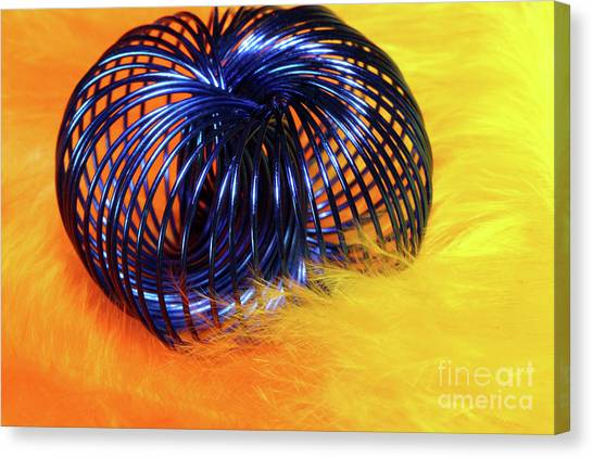 Feathers And Jewelry  Canvas Print