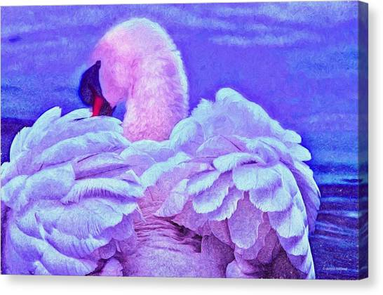 Feathers Of Royalty Canvas Print