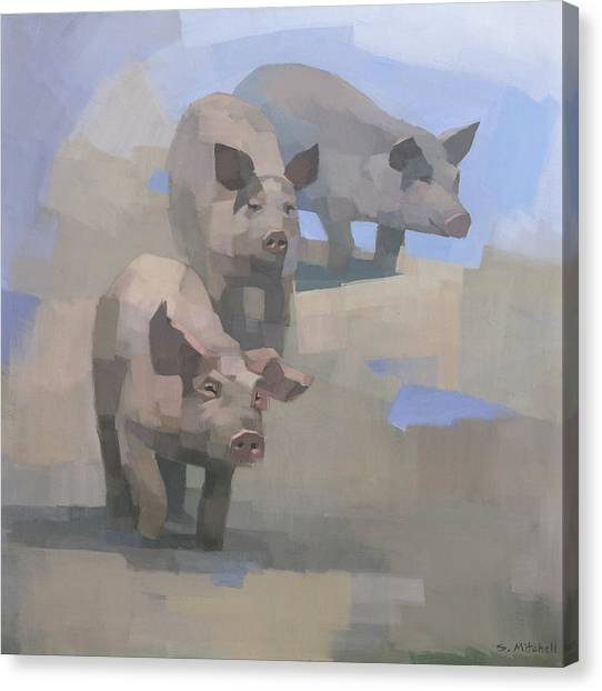 Pig Farms Canvas Print - Feed Time by Steve Mitchell