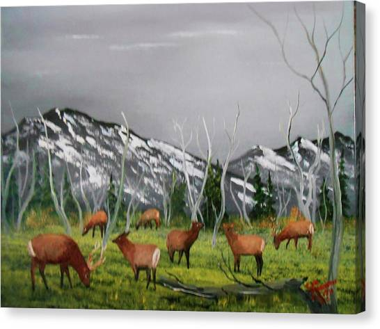 Feeding Elk Canvas Print
