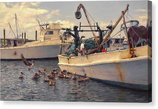 Feeding The Pelicans Canvas Print