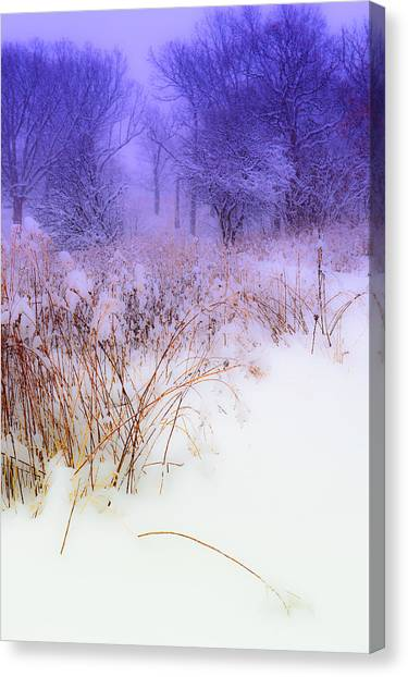 Feel Of Cold Land Canvas Print