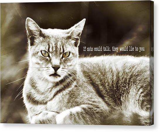 Feline Moment Quote Canvas Print by JAMART Photography