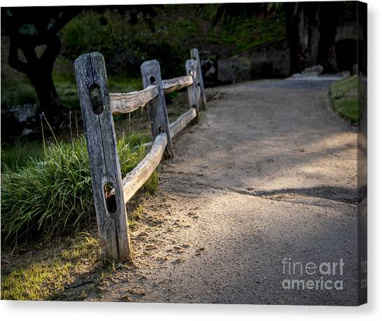 Brown Ranch Trail Canvas Print - Fence Posts In Light by Rich Governali