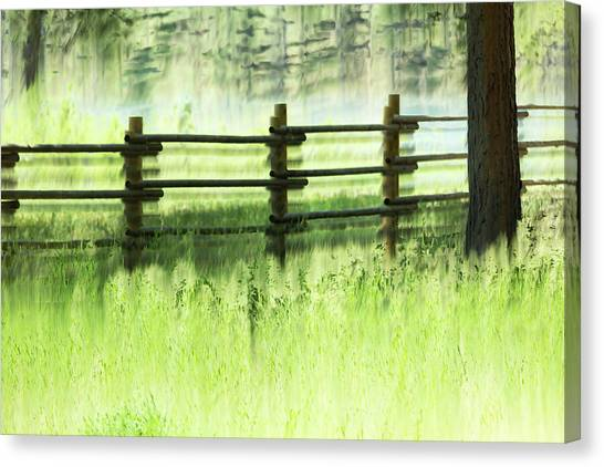 Fenced Out Canvas Print