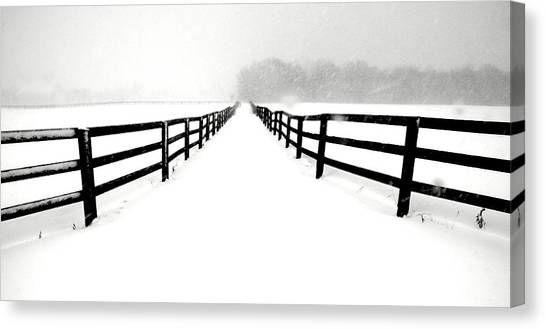 Fenced White Out Canvas Print