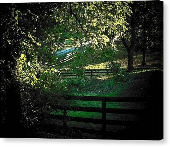 Fences On The Farm Canvas Print