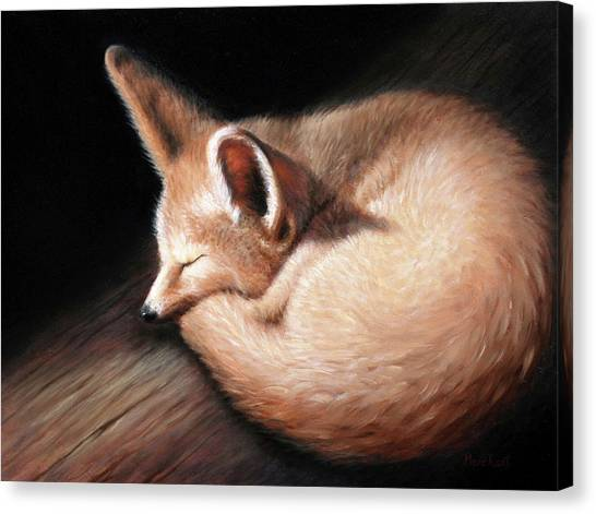 Fennec Fox Canvas Print