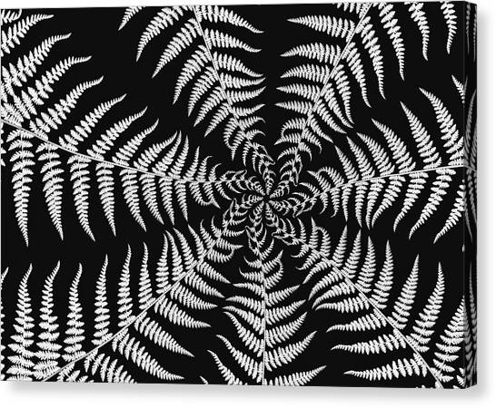 Fern Abstract Canvas Print by Edward Myers