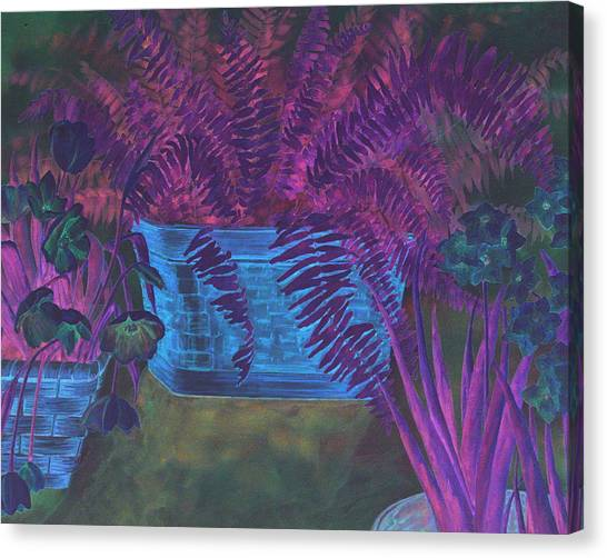 Fern Basket Canvas Print