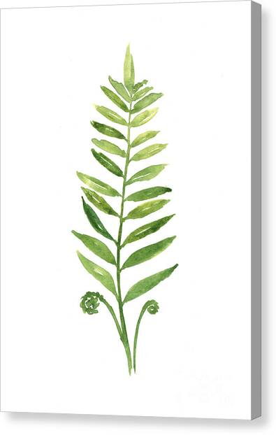 Garden Flowers Canvas Print - Fern Leaf Watercolor Painting by Joanna Szmerdt