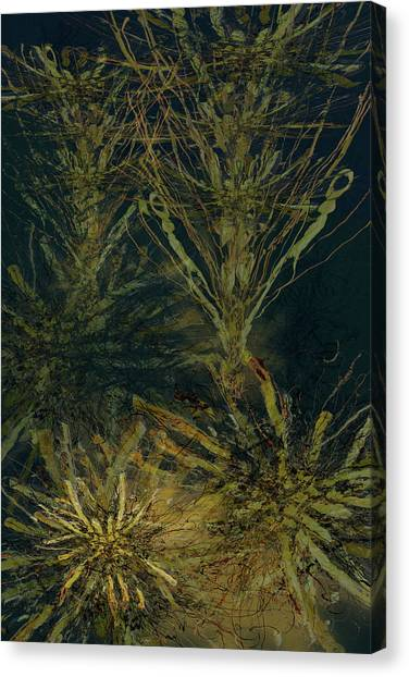 Fern Series Inky Aether Canvas Print