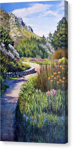 Fernkloof Path Canvas Print
