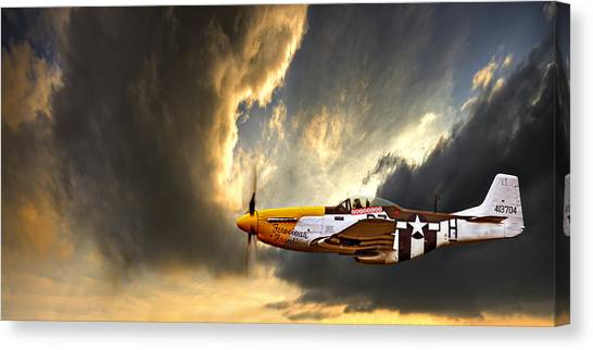 Air Force Canvas Print - Ferocious Frankie by Meirion Matthias