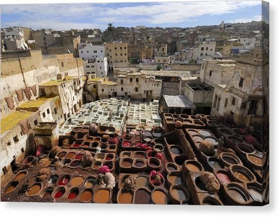 Fez Morocco Canvas Print by Liz Pinchen