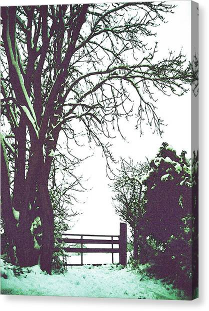 Field Gate Canvas Print