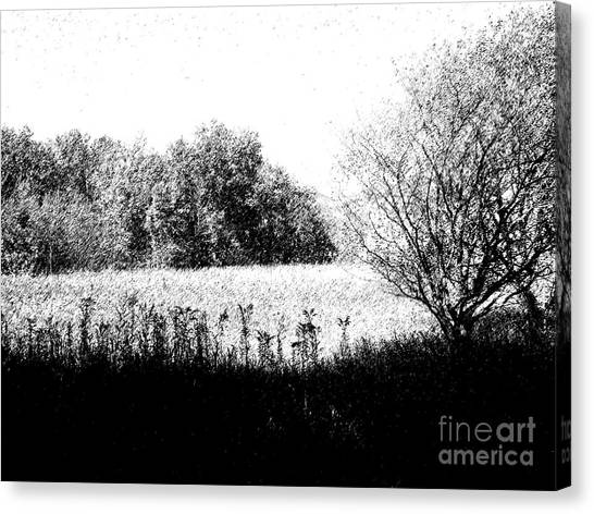Field In Black And White Canvas Print by John  Bichler
