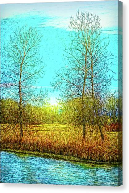 Field In Morning Light Canvas Print