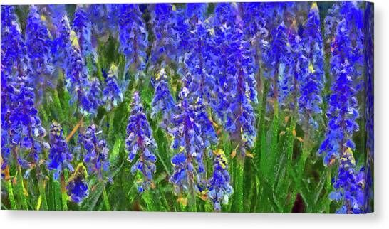 Canvas Print featuring the digital art Field Of Blue by Digital Photographic Arts