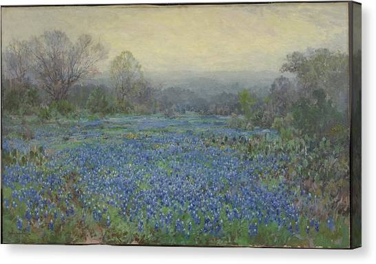 Field Of Bluebonnets Canvas Print