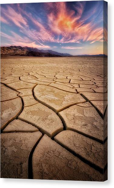 Field Of Cracks Canvas Print