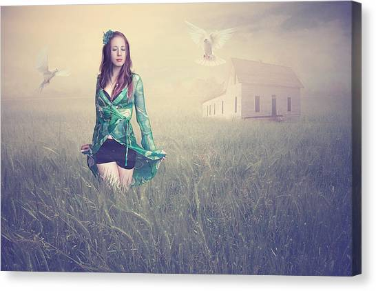Dove Canvas Print - Field Of Dreams by Baden Bowen