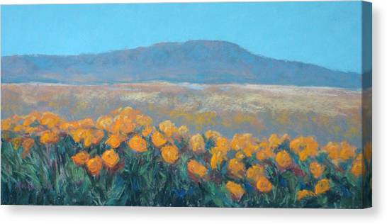 Field Of Dreams Canvas Print by Debra Mickelson