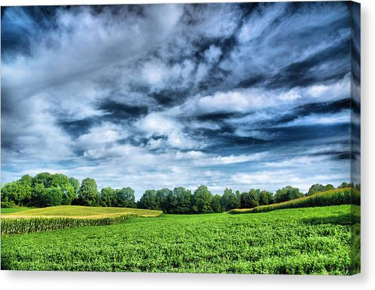 Field Of Dreams One Canvas Print