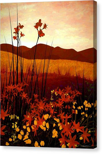 Landscapes Canvas Print - Field Of Flowers by Cynthia Decker