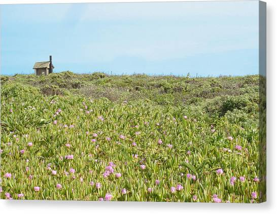 Field Of Flowers Canvas Print by Michael Simeone