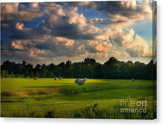 Canvas Print featuring the photograph Field Of Grace by T Lowry Wilson